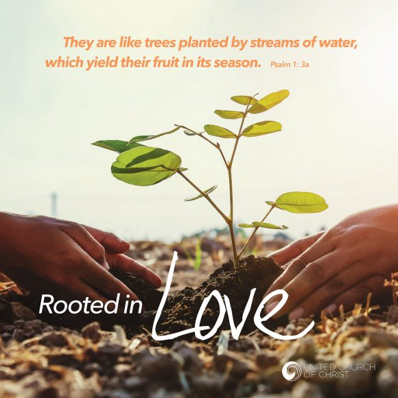 title - Rooted in Love